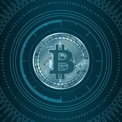 BTC System Software Programmed For Sheer Profit And Success